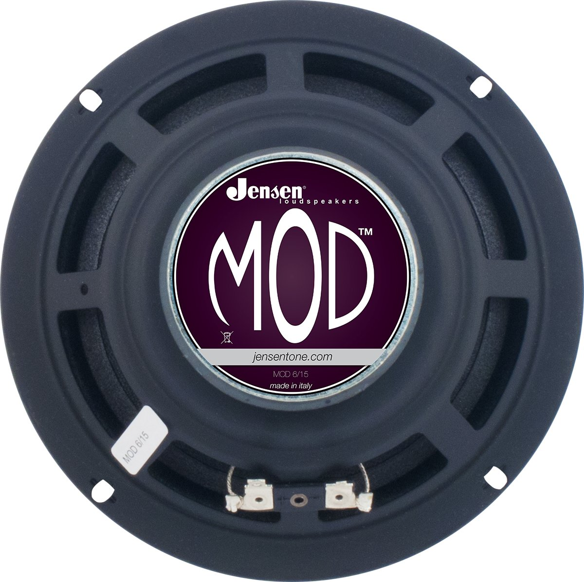 "Amazon.com: Jensen MOD6-15 6"" 15 Watt Guitar Speaker, 8 ohm: Musical  Instruments"