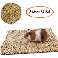 Grass Mat,Woven Bed Mat for Small Animal,Chew Toy Bed Play Ball for Guinea Pig Parrot Rabbit Bunny Hamster L(2 Grass Mat and 1 Ball)