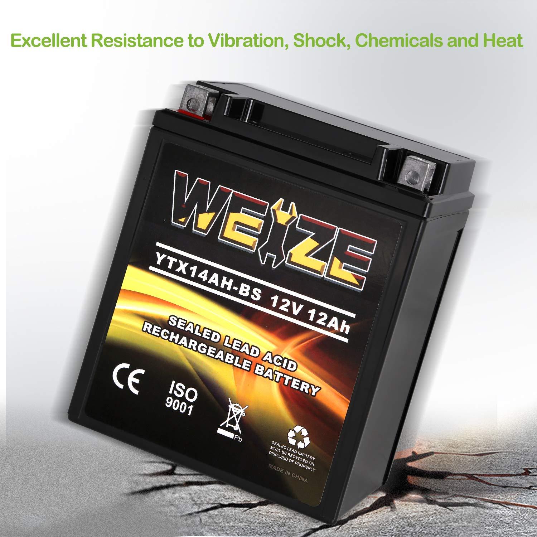 Amazon.com: Weize YTX14AH-BS - Batería recargable de alto ...