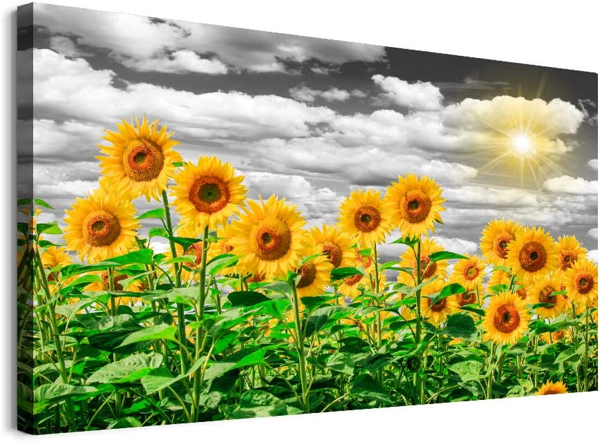 Sunflower Canvas Wall Art for Bedroom Family Kitchen Wall Decor Modern Black and White Paintings Farmhouse Bathroom Decoration Flowers Canvas Art Artwork for Home Living Room Ready to Hang Pictures