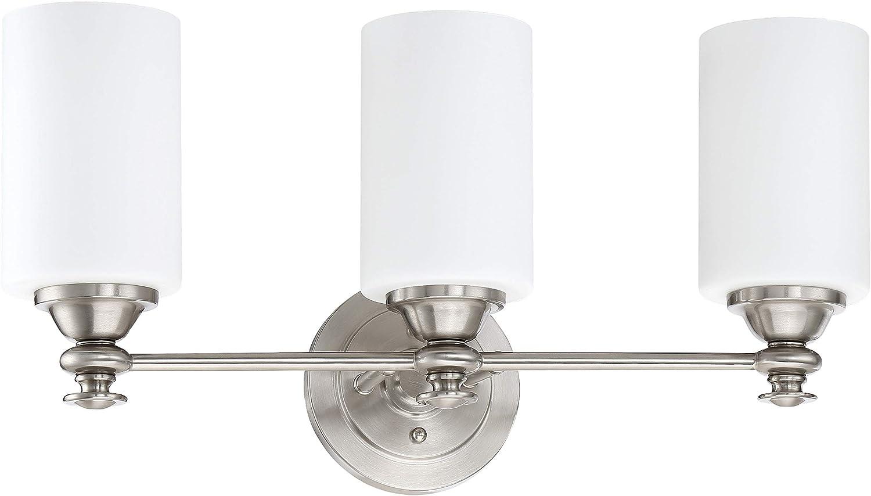 Amazon.com: Craftmade 49803 Dardyn - Lámpara de baño (3 ...