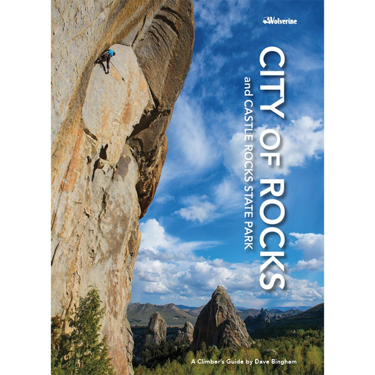 City Of Rocks And Castle Rocks: Dave Bingham: 9781938393242: Amazon.com:  Books