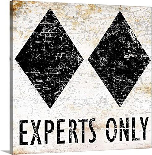 Experts Only Sign Canvas Wall Art Print