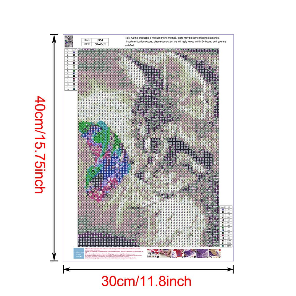 DIY 5D Full Diamond Painting Kit,Cross Stitch Paintings Pictures Arts Craft for Wall Home Decoration 30 40mm Women Pattern