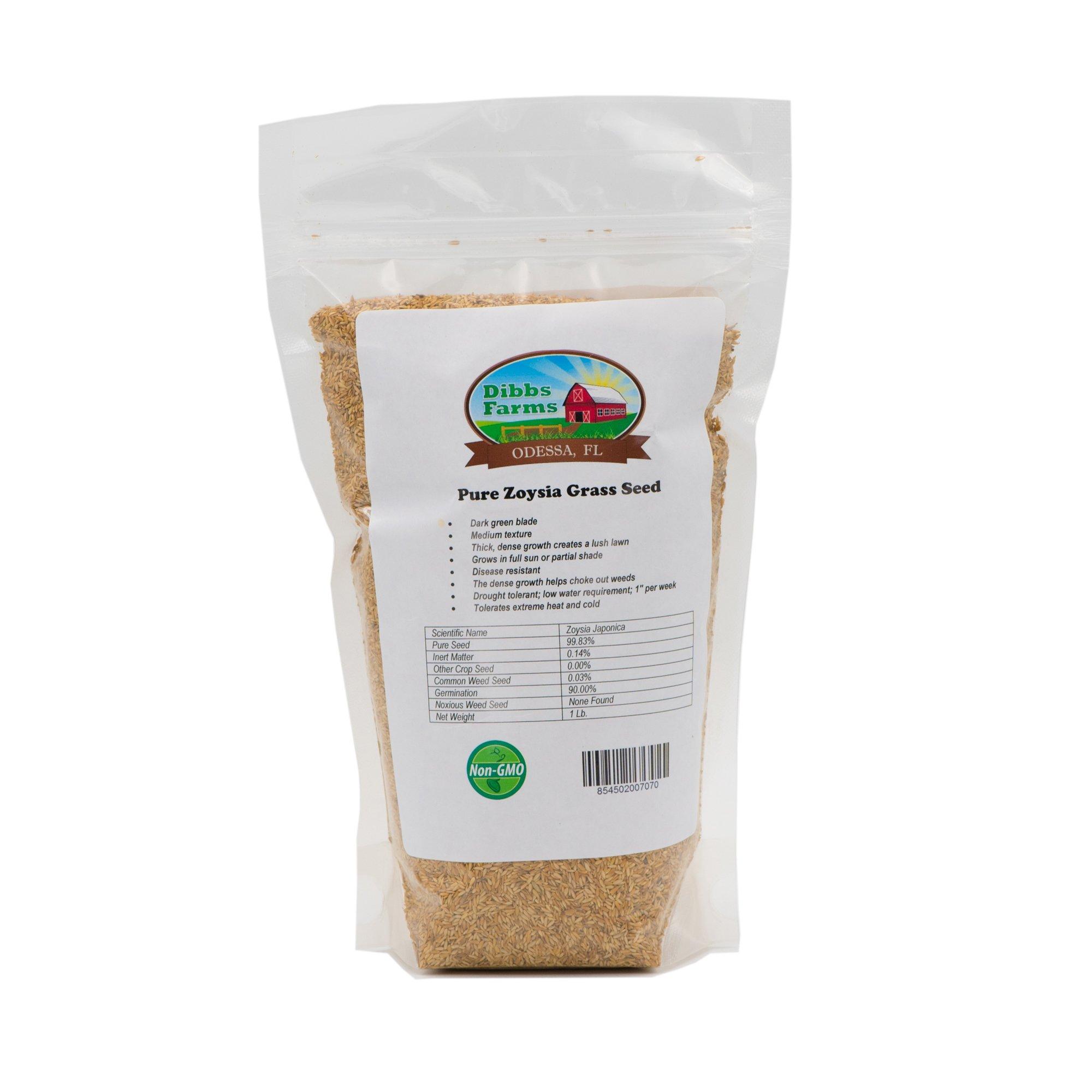 Dibbs Farms Pure Zoysia Grass Seeds - 1 Lb. by Dibbs Farms