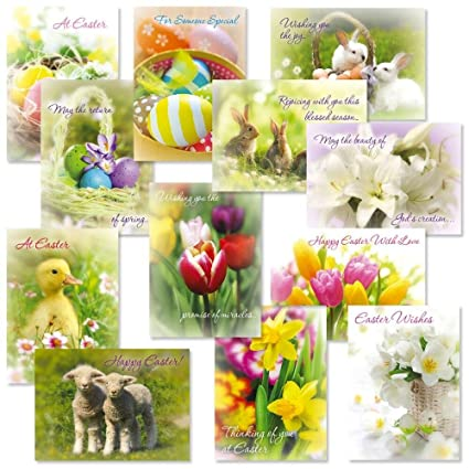 amazon com easter photo greeting cards value pack set of 12 12