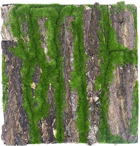Simulación de corteza natural de musgo artificial corteza de pino soporte de pared para plantas de tubería de alcantarillado decoración del hogar: Amazon.es: Amazon.es