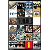 The Beatles - Albums Poster (24x36) PSA034211