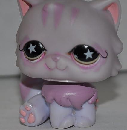 Amazon.com: Gato persa # 891 (Gris, Púrpura ojos, púrpura ...