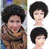 Short Afro Wig Brazilian Virgin Human Hair Wigs Natrual Black Afro Kinky Curly Wigs for Black Women Natural Looking 6.5…