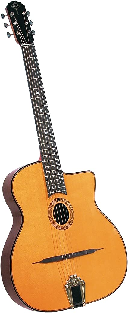 Saga DG-250 Jazz Guitar Gitane Gypsy: Amazon.es: Instrumentos ...