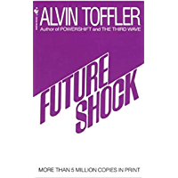 Future Shock (English Edition)