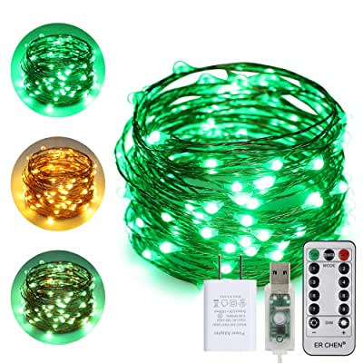 ErChen USB Dual-Color Led String Lights, 33FT 100 LEDs Color Changing Dimmable 8 Modes Copper Wire Fairy Lights with Remote Timer for Indoor Outdoor Christmas (Warm White, Green) : Garden & Outdoor