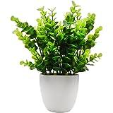 Offidix Mini Plastique Eucalyptus plantes artificielles avec vase pour bureau, maison et ses amis 'Cadeau Faux Plante avec pots en plastique pour décoration de la maison (grande taille)