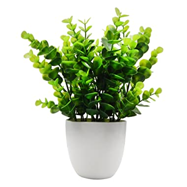 OFFIDIX Mini Artificial Eucalyptus Plants with Vase for Office Desk,Fake Plant with Plastic Pots for Home,Shower Room Decoration (Green)