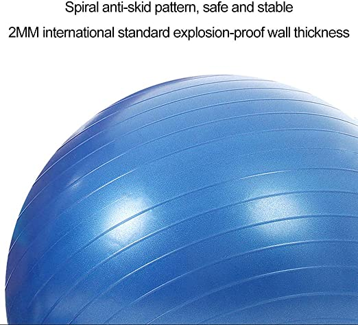Stable Balance And Yoga Sports Ball 65cm Including Pump And Quick Pump PVC