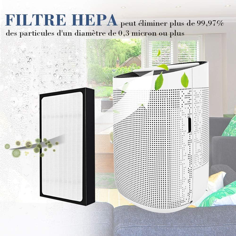 Hysure® 2 en 1 Deshumidificador purificador de Aire, Original HEPA Filtro de Repuesto: Amazon.es: Hogar