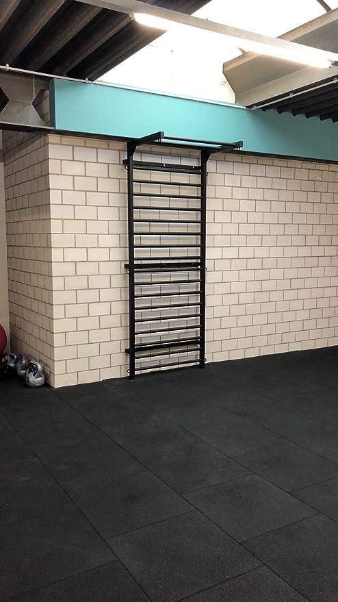 ARTIMEX espaldera de Acero (Escalera Sueca) para Gimnasia - utilizadas en hogares, gimnasios o Exteriores, 265x100 cm, código 231-Gladiator-90: Amazon.es: Deportes y aire libre