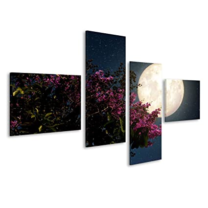 Quadri moderni fiori di ciliegio belle (sakura fiori) con la Via ...