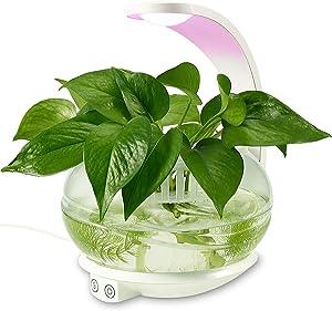 TORCHSTAR LED Indoor Garden Kit Plant Grow Light, Fish Tank Design + Portable 'C' Shape Basket, Sensitive Touch Control, for Bedroom, Kitchen, Office