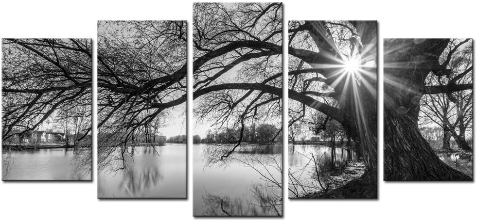 Amazon Com Sechars 5 Pieces Wall Art Old Tree By Lake Picture Canvas Prints Sunrise Painting Black And White Landscape Canvas Art Modern Wall Decoration Framed And Ready To Hang Home Kitchen