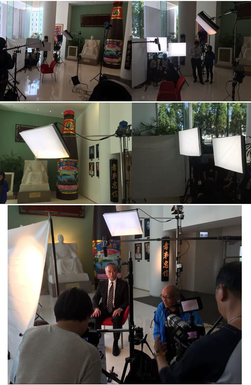 Falcon Eyes RX-12T led Panel kit Set Studio Light Waterproof Flexible Video Light for Film Photography Advertisement Shooting …