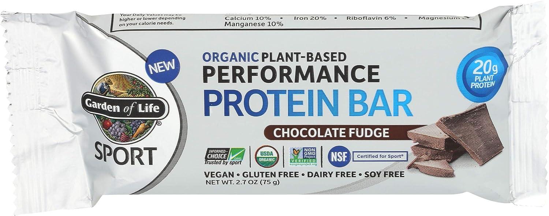 GARDEN OF LIFE Organic Chocolate Fudge Protein Bar, 2.64 OZ