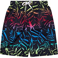 Big Chill Boys' Bathing Suit - Quick Dry Board Shorts Swim Trunks