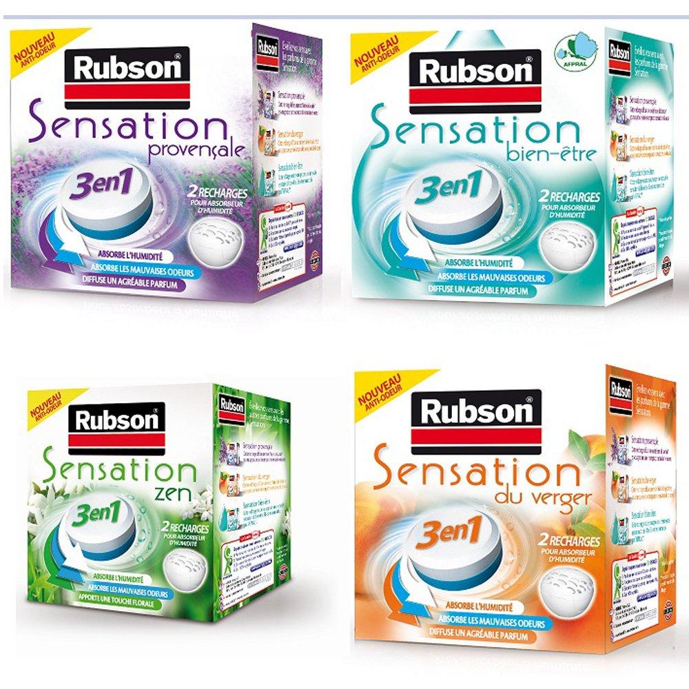 Parfum Fruits Aroma Energy RUBSON Recharges parfum/ées pour absorbeur dhumidit/é 2 recharges