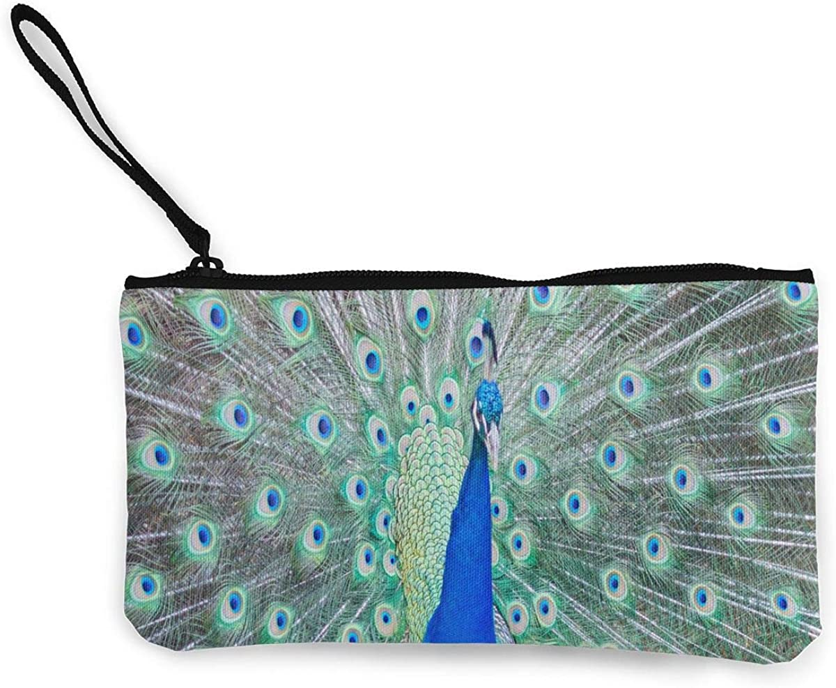 Coin Purse Peacock Plumage...