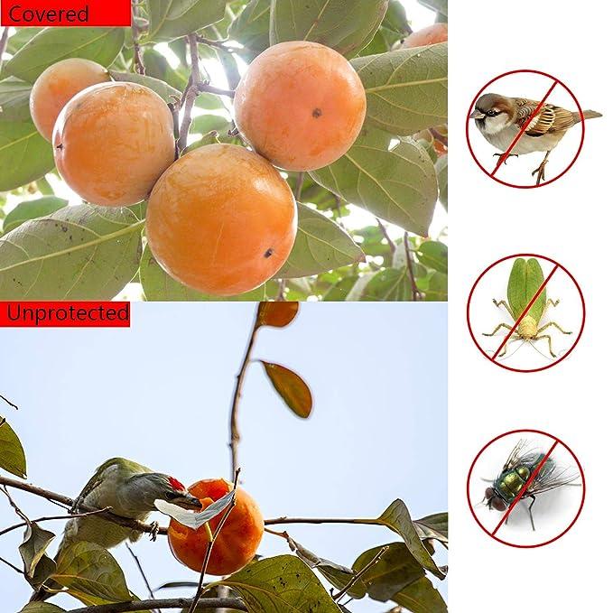 Amazon.com: 100 bolsas de protección de frutas, tela ...