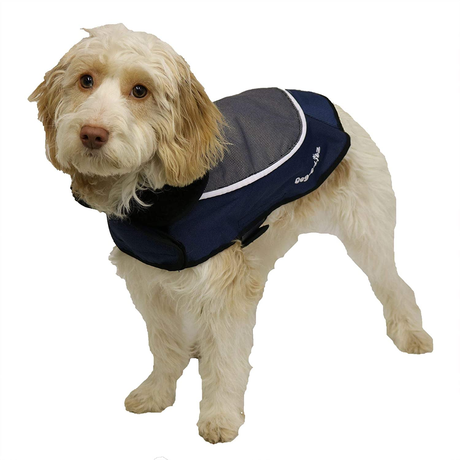 Luxury Night Bright bluee LED Reflective Dog Coat Jacket 12  (Small)