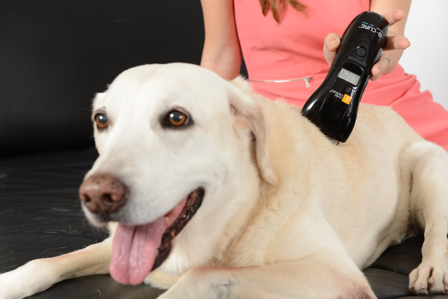 B-cure Laser Vet Device for Pets: A Home Laser Therapy, Accelerates Healing and Reduces Pain and Inflammation in Dogs, Cats, Horses and Other Animals