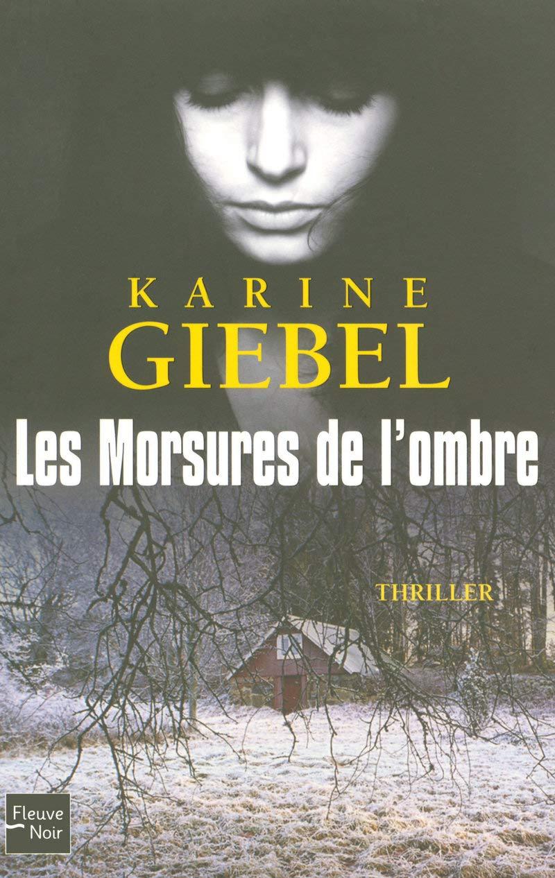 Les Morsures De L Ombre Karine Giebel 9782265085848
