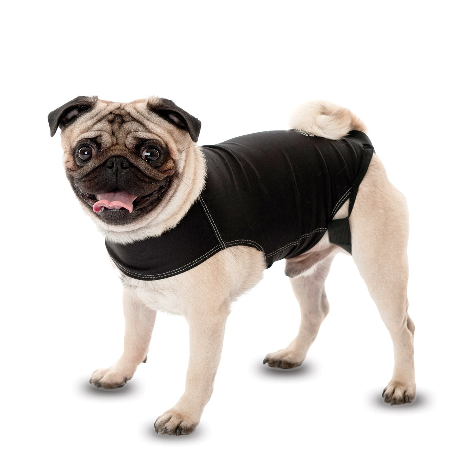 Anxiety Wrap Dog Coat, instant therapy for dogs afraid of storms, loud noises, travel, strangers and separation. Size 7 (X-Large) The Company of Animals AW07