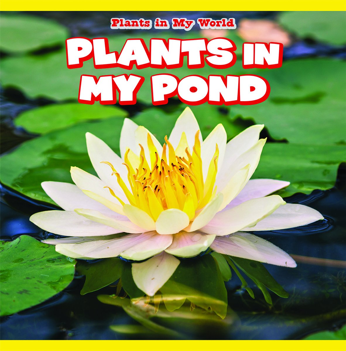Plants in My Pond (Plants in My World)