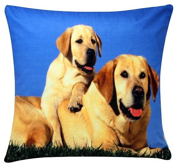 Golden Retriever Labrador Perro y Cachorro Imprimir Chenille Cotton 17 x 17 pulgadas Cojín para sofá cama Sofá: Amazon.es: Ropa y accesorios