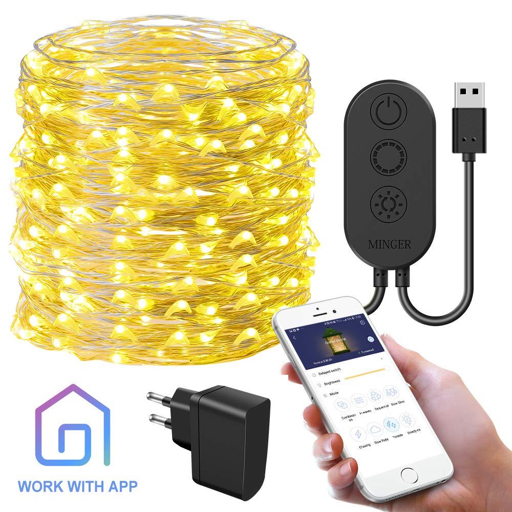 Catena Luminosa Stringa Luci LED con APP, Govee