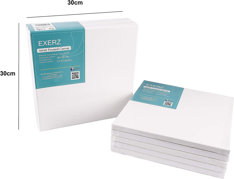 EXERZ Tele per pittura 20x20cm set da 5 //Tele d/'artista intelaiate//280GSM//Prestirate 100/% Cotone//Vuote//Imprimitura tripla//Tre strati di gesso//Prive di acidi//Grana media//spessore 1,7cm