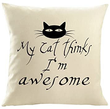 Mister funda de cojín almohada personalizada gato gatos resaca Cat Gato Mutti gato amantes yo y mi gato, My Cat Thinks, 50 x 50 cm: Amazon.es: Hogar