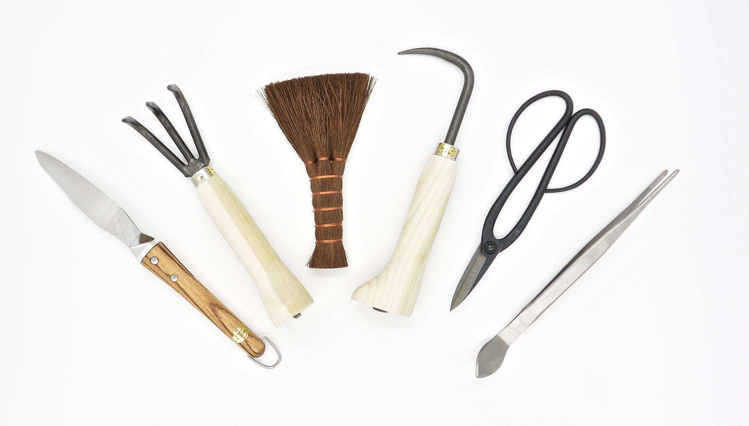 Bonsai tool kit 6 pcs
