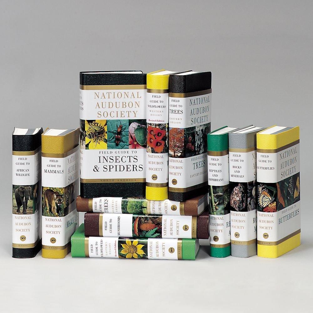 National Audubon Society North American Field Guides Set: Amazon.com: Books