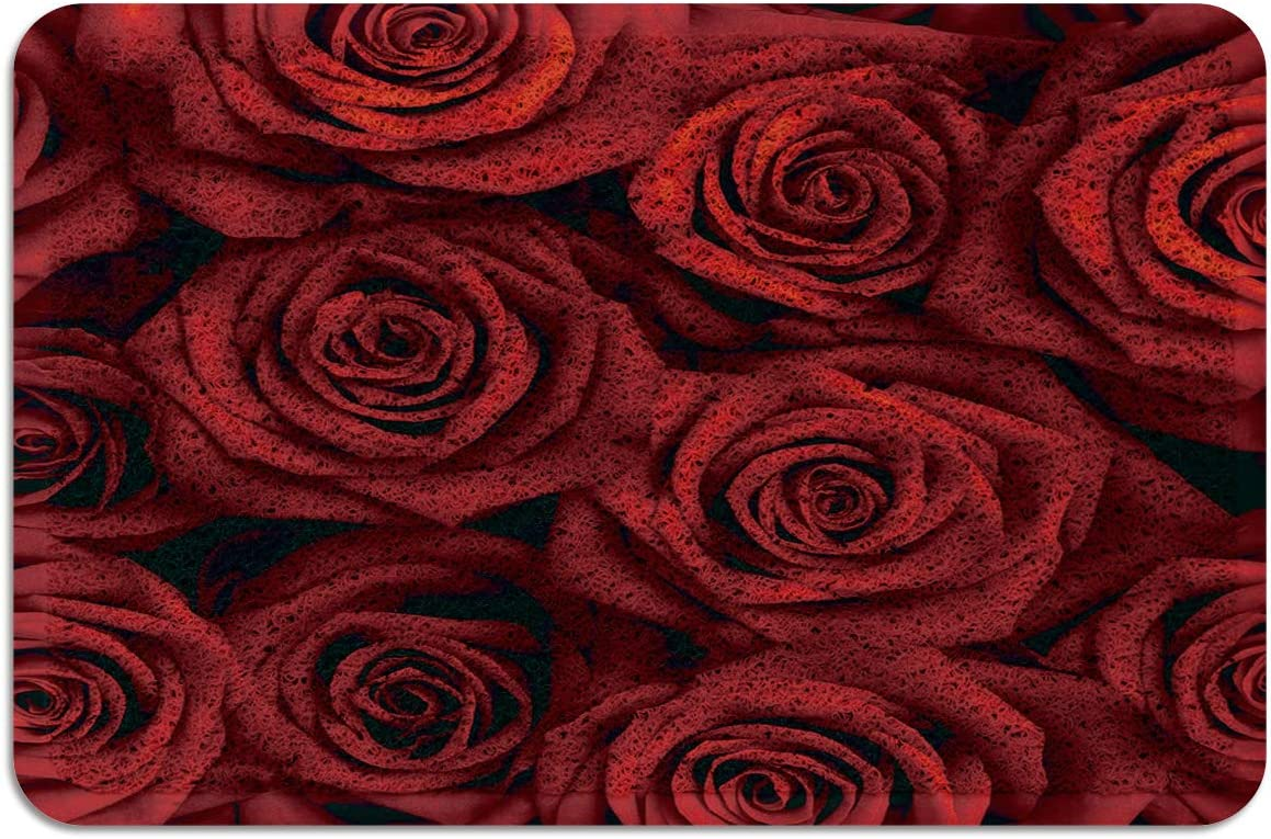 Red Roses Flowers PVC Doormat Rubber Backing-Non Slip Entryway Rug Indoor Outdoor Garage Patio High Traffic Areas Shoe Rugs