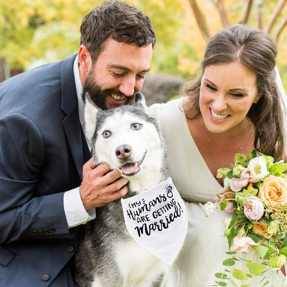 My Humans are Getting Married Dog Bandana, Wedding Dog Bandana, Dog Engagement Announcement, Wedding Photo Prop, Pet Scarf, Pet Accessories (My Humans are Getting Married Dog Bandana) : Pet Supplies