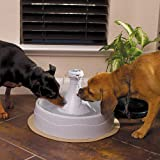 PetSafe Drinkwell 360 Pet Water