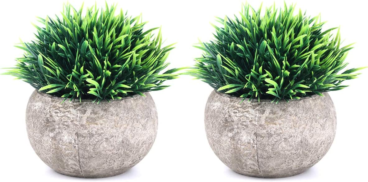 Best 5 Artificial Plant Decors