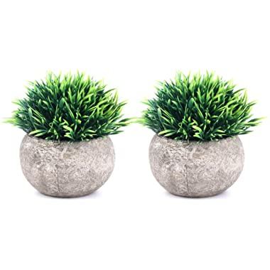 The Bloom Times 2 Pcs Fake Plant for Bathroom/Home Office Decor, Small Artificial Faux Greenery for House Decorations (Potted Plants)