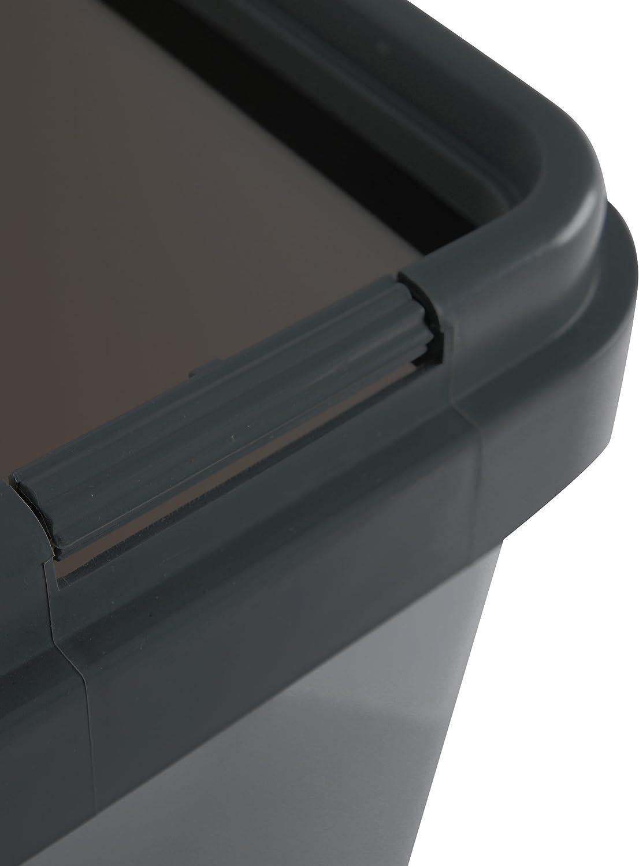 Ribelli Zweimer Duo Müllbehälter mit Deckel Kunststoff Mülleimer für die  Küche geruchsdichter Abfalleimer Mülltrennsystem 18 x ca. 185 Liter - Farbe: