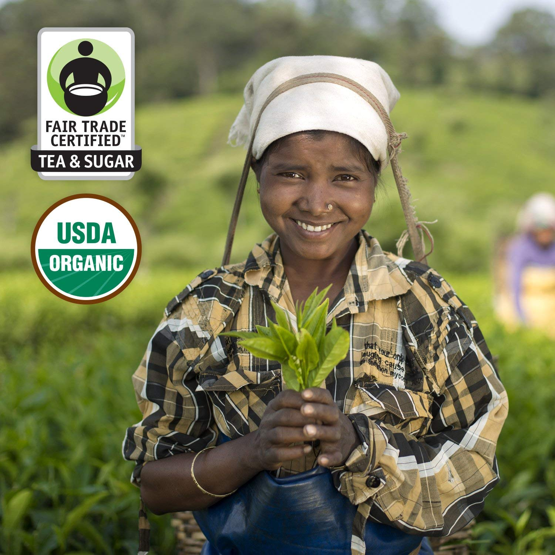 Honest Tea Organic Fair Trade Honey Green Gluten Free, 16.9 Fl. Oz, 33 Pack (Honey Green Tea (33 Pack)) by Honest Tea (Image #3)