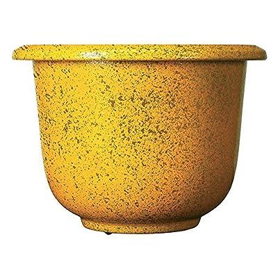 Novelty Round Glazetone Planter, 12-Inch, Marigold : Garden & Outdoor